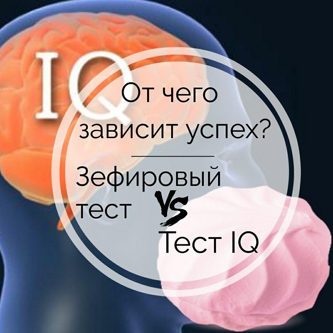 От чего зависит успех? Как влияет интеллект на успешность?