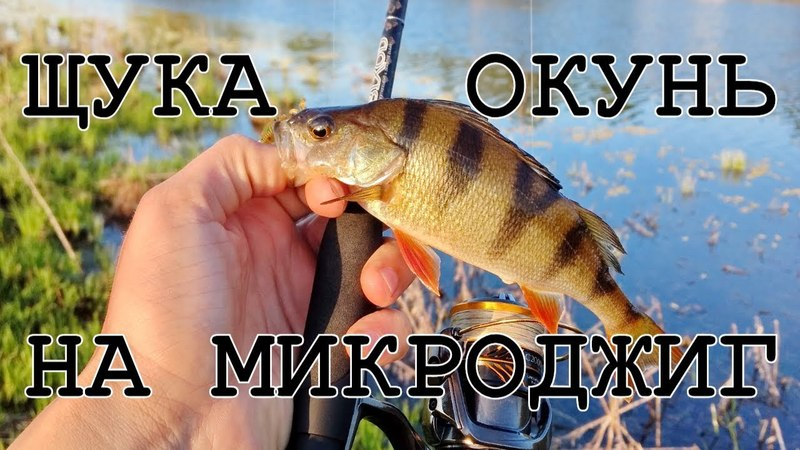 РЫБУ ЗДЕСЬ Я ЕЩЕ НЕ ЛОВИЛ! ОЗЕРО ПОРАДОВАЛО КЛЕВОМ - Рыбалка со stigan'ом