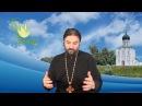 Мудрость мира сего - безумие в глазах Божиих! о. Андрей Ткачев