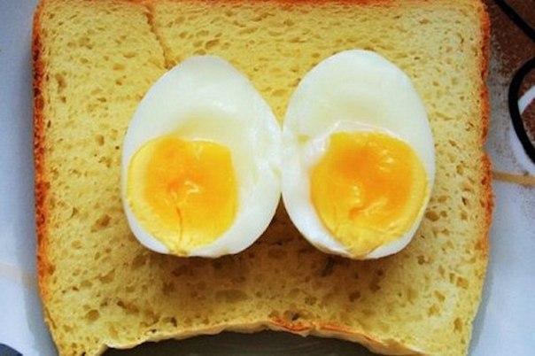 Что с вами будет, если вы будете есть 1 яйцо в день?, изображение №1
