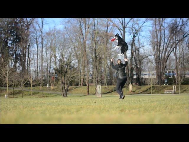 Frisbee tricks winter training