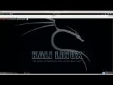 Kali Linux лекция часть 8