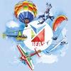 Белорусская федерация авиационного спорта