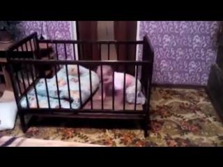 Побег из кроватки  Он продумал все !