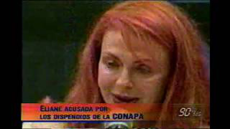 TENIENTE PNP INABEC LA CONAPA INEI=GOBIERNO PERUANO 2004