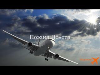 Поэзия полета