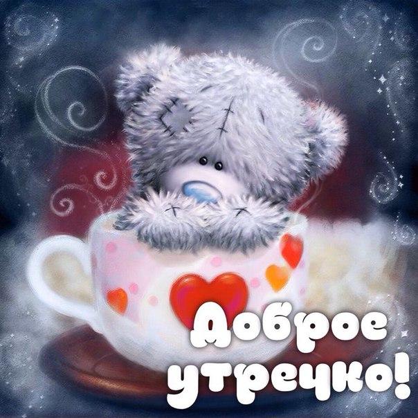 картинки мишки тедди с добрым утром украинец, побывавший