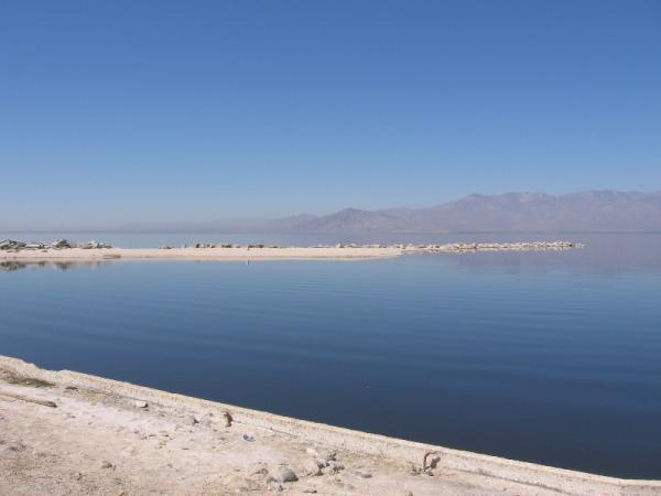 Калифорния. Соленое озеро.
