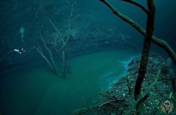 Удивительная подводная река в Мексиканском заливе