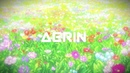 Aerin Our Past