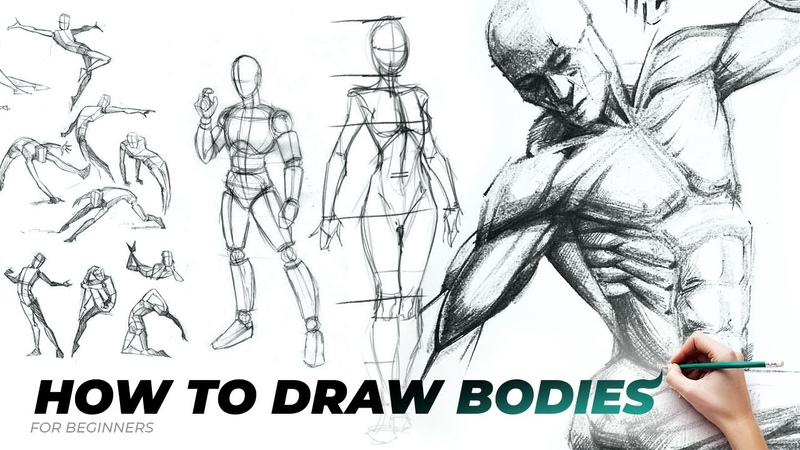 HOW TO DRAW BODIES Proportions Male Famale Poses Easy drawing tutorial for beginners