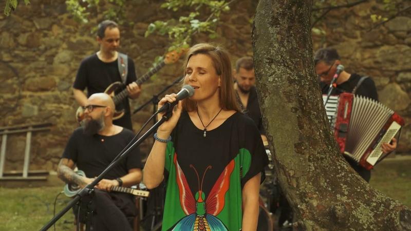 MIKROMUSIC Kołysanka Pani Broni Mikromusic z Dolnej Półki Official Acoustic Live Video
