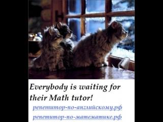 #репетиторство #ЕГЭ #ОГЭ #ГИА #математика #алгебра #геометрия #русский #язык #физика #репетитор