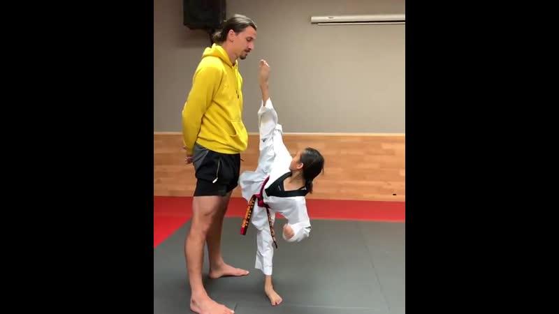 Малышка-тхэквондистка дотянулась ногой до подбородка Ибрагимовича