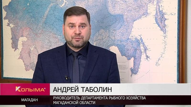 Правительство России рассматривает предложение о продаже улова рыбаков-любителей