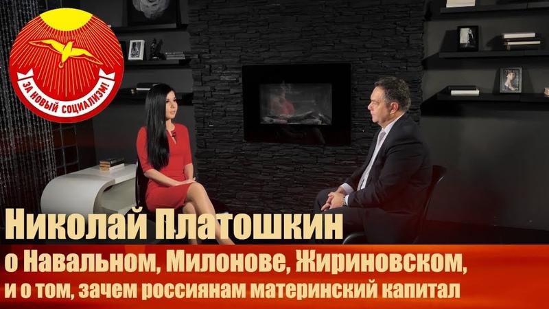 Платошкин о Навальном Милонове Жириновском и о том зачем россиянам материнский капитал