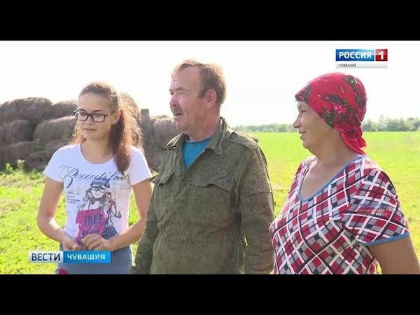 Супруги Владимировы из села Большой Сундырь Ядринского района стали успешными аграриями