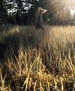 Личный фотоальбом Светланы Светлаковой