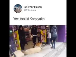 zmir Geyik on Facebook