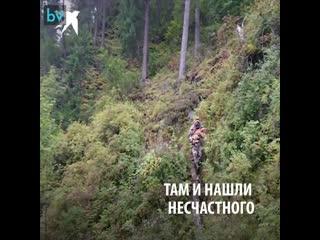 Под Красноярском на Мане какой-то живодёр привязывает проволокой собак к дереву в лесу и просто уходит