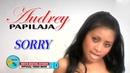 SORRY - AUDREY PAPILAJA MOLUCCAS KEVS DIGITAL STUDIO OFFICIAL VIDEO MUSIC
