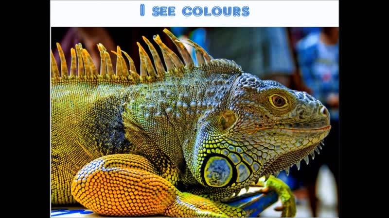 I see colours (А.Л.Аня Слепуха)