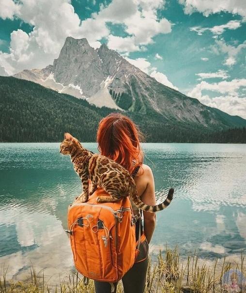 Большое препятствие для счастья  это ожидание слишком большого счастья.