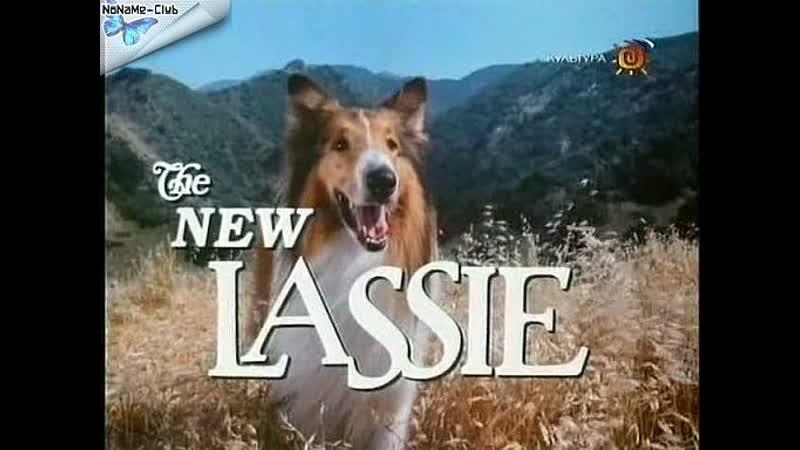 Новые приключения Лесси(1989–1991) серии 25-30