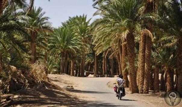 Какие пустыни Ирана стоит посетить