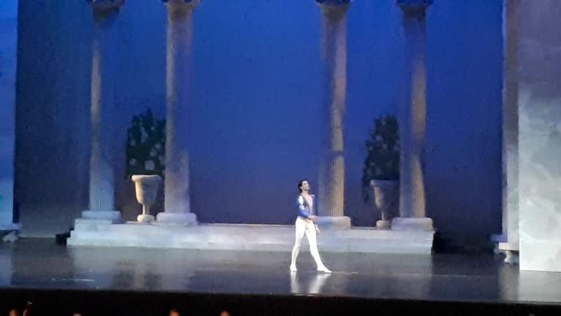 Swan Lake Act 1 Birthday Celebration for Prince Sigfried 8