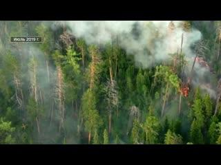 После огня. Специальный репортаж Андрея Шляпникова