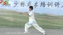 Shaolin Yin hand Stick 7