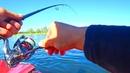 ЛОВЛЮ В ОТВЕС НА ТИРОЛЬКУ ХАРИУСА Рыбака на два часа река Енисей