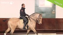 Working Equitation Part 3 Slalom canter work Pedro Torres