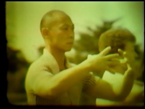 Sifu Fong Ha Yiquan Zhan Zhuang and Tai Chi Chuan