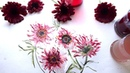 How to Paint Daisies Using Inks and Watercolors | Giveaway Announcement