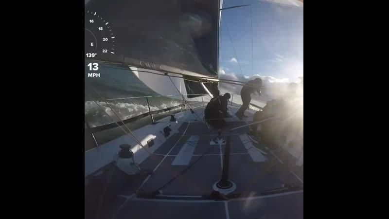 Wild OFfshore Sailing 19