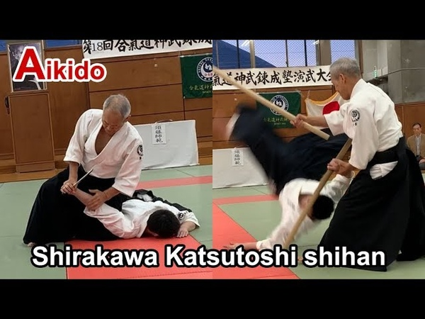 Aikido special demonstration 2019 - Shirakawa Katsutoshi shihan