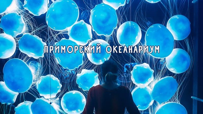 ПРИМОРСКИЙ ОКЕАНАРИУМ Владивосток март 2017