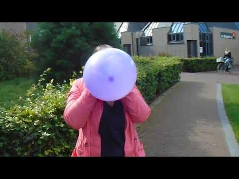 Cute Girl blowing up a purple balloon until it pops