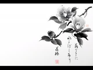 Музыка японии (ноябрь 2019)