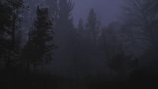 Hildur Guðnadóttir - Heyr Himnasmiður(Video)