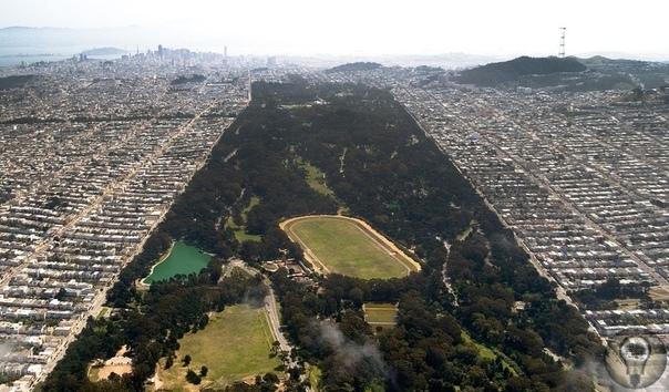 """В парке """"Золотые ворота"""" в Сан-Франциско полиция обнаружила обезглавленный труп мужчины, 8 февраля 1981г."""
