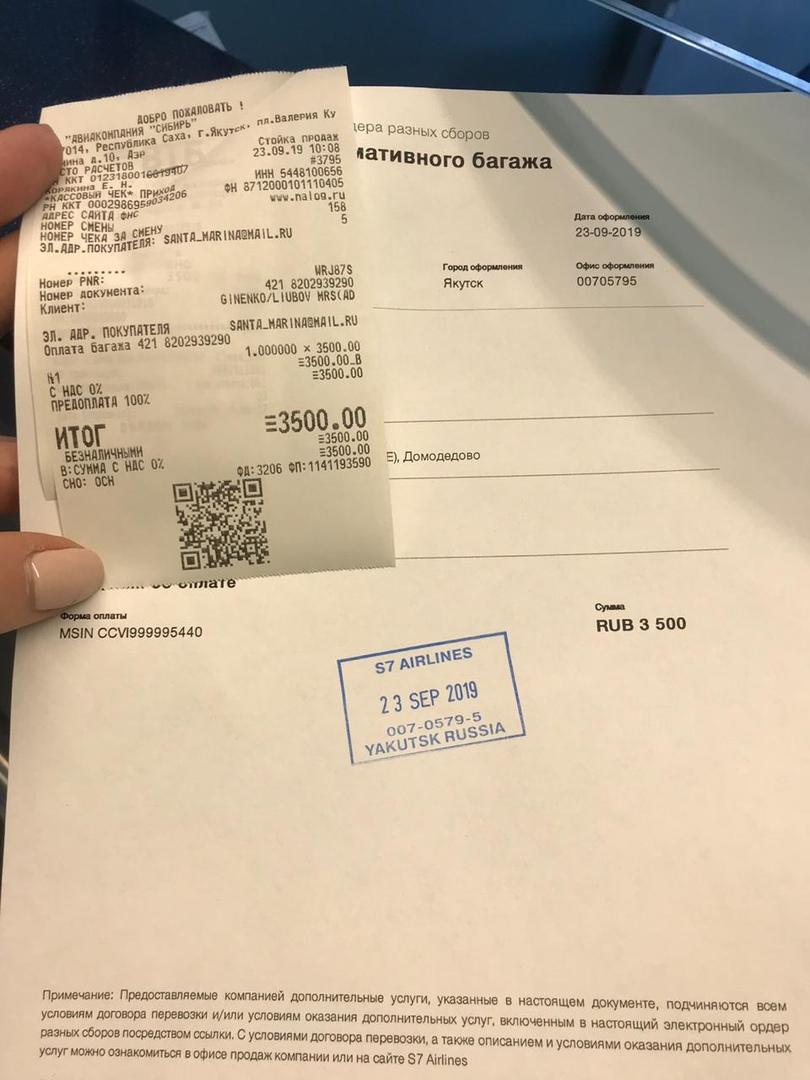белль - Москва- Санкт- Петербург,  Белль , сука, 23.01.2019г R1b16j1x1YI