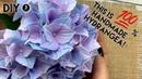 DIY Handmade Hydrangea МК Реалистичная гортензия из зефирного фоамирана