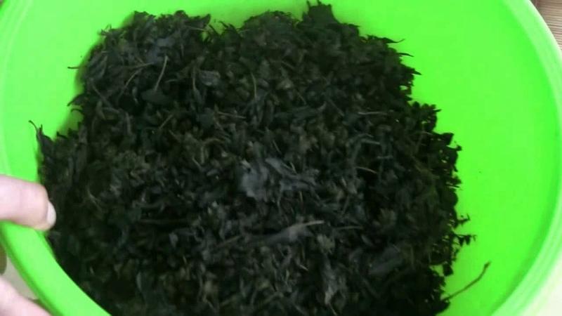 Чай из листьев мелисы мяты ,малины,вишни и т д
