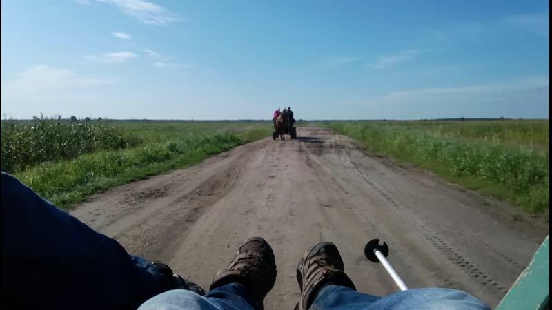 Белорусское Полесье. В окрестностях деревни Велемичи
