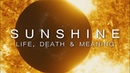 Sunshine A Visceral Experience of Life Death and Meaning