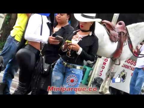 Lindas mujeres en caballo en la cabalgata feria de tulua 61 horse colombia 2016 video HD 11