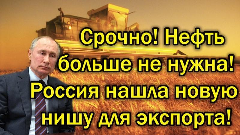 Срочно! Нефть больше не нужна - Россия нашла новую нишу для экспорта! -новости